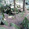 Скалы Довбуша