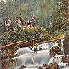 Водопад на р. Жонка, окрестности г. Яремче (открытка, источник - artkolo.org)