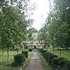 Парк перед палацом