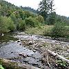 The Zhdenivka river
